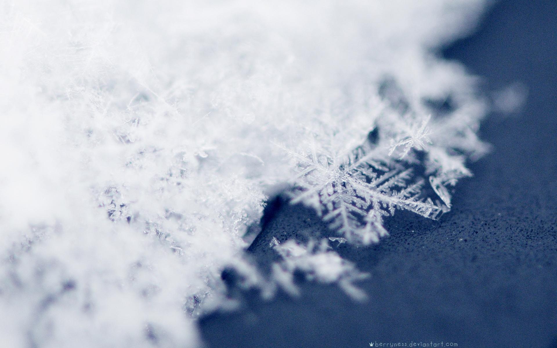 Snow Snowflakes Wallpaper 1920x1200 Snow Snowflakes 1920x1200