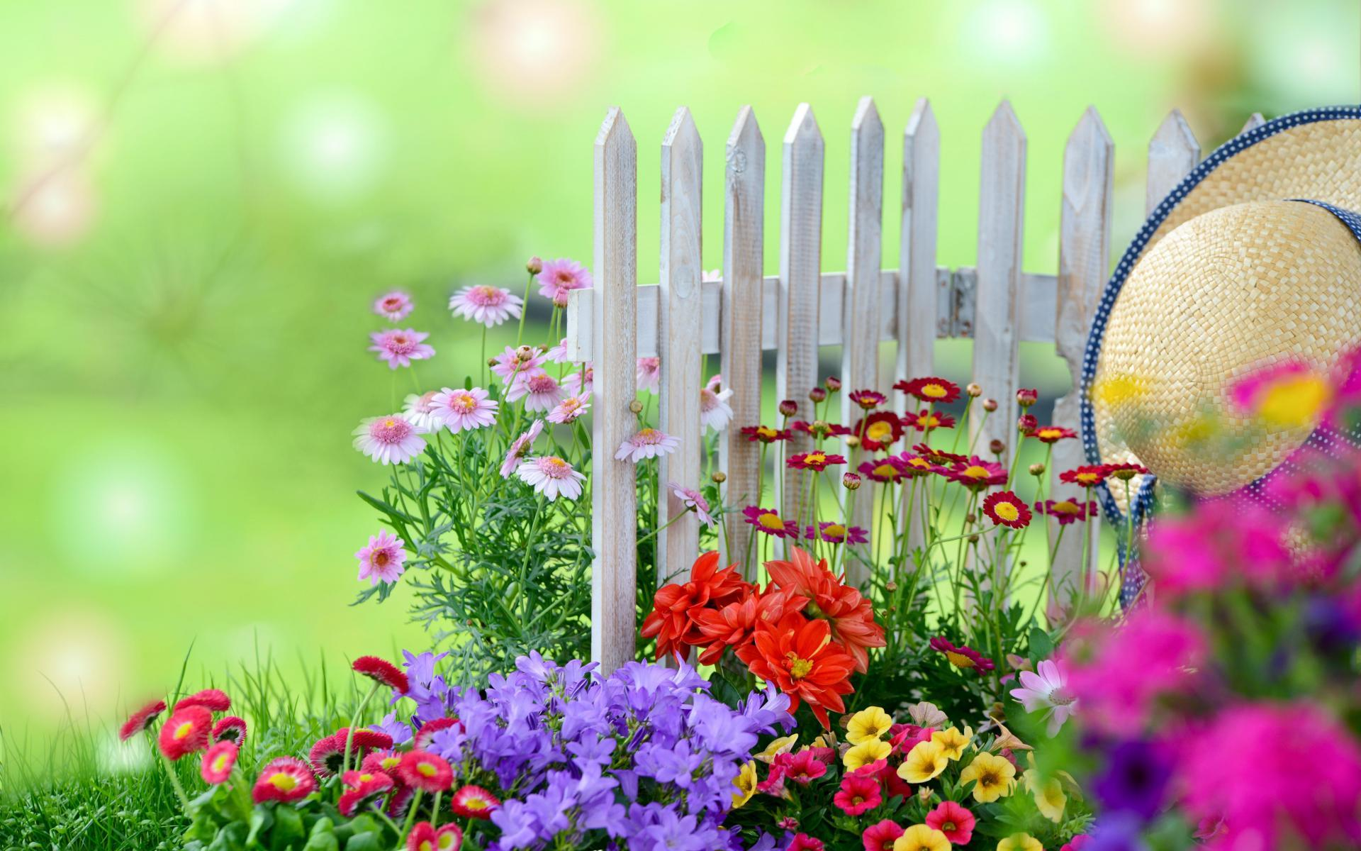 High Live Garden Backgrounds   Candace Duhart gratis only here 1920x1200
