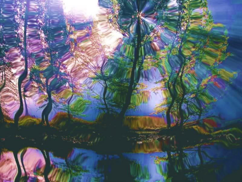 Trippy nature wallpaper wallpapersafari - Trippy nature wallpaper ...