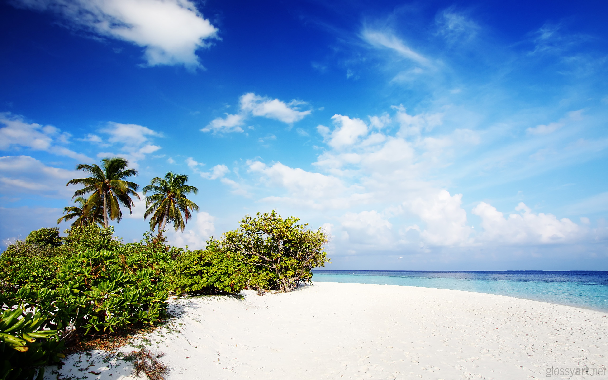Nature Beach Wallpapers HD Wallpapers 2560x1600