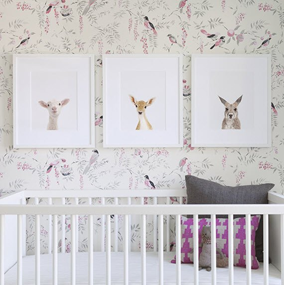 Animal Wallpaper For Nursery Wallpapersafari