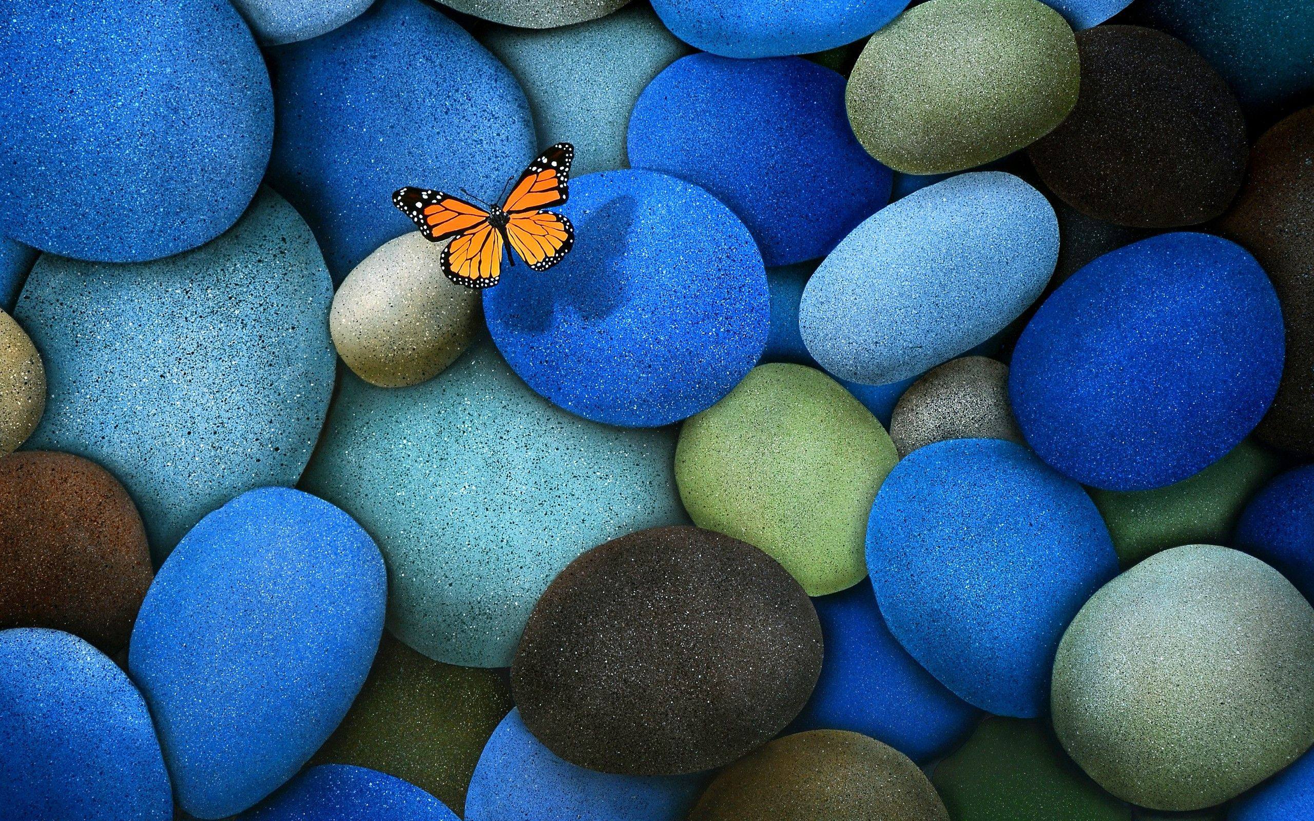 pics Butterfly On Blue Stones   Wallpaper 39212 EVERYTHING 2560x1600
