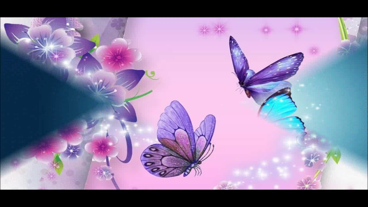 Beautiful Butterfly Wallpapers HD Pictures 1280x720