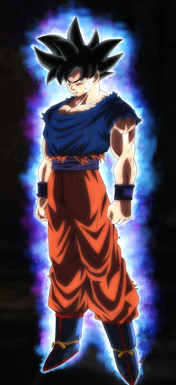 Goku Ultra Instinct by SonimBleinim 604x1323
