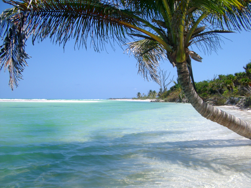 Slide show of pictures of various beautiful beaches all over the world 800x600