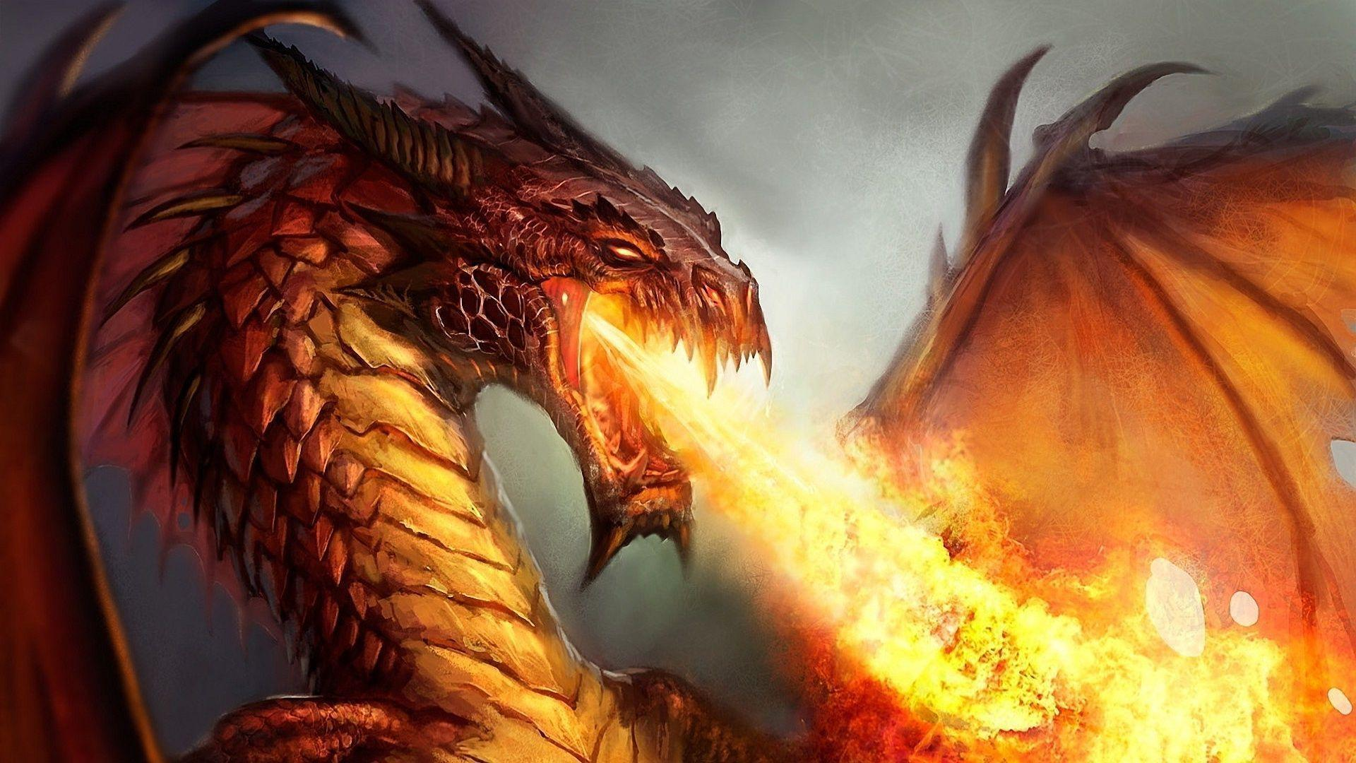 Fire Dragon Wallpapers 1920x1080