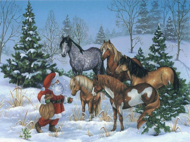 Christmas Horse Wallpaper Free - WallpaperSafari