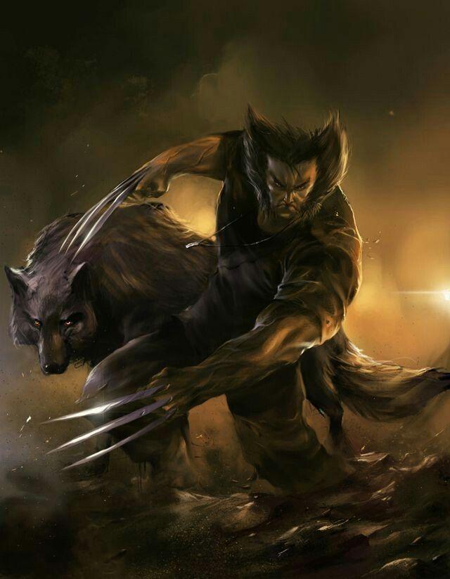 The Wolverine wallpaper Marvel Wolverine art Wolverine Marvel 640x824