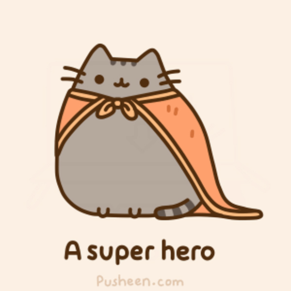 pusheen wallpaper unique girls 600x600