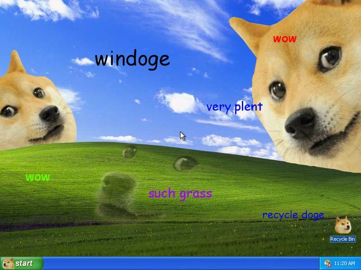 Doge Meme Windows Desktop Pampered Pooch Pinterest 736x552