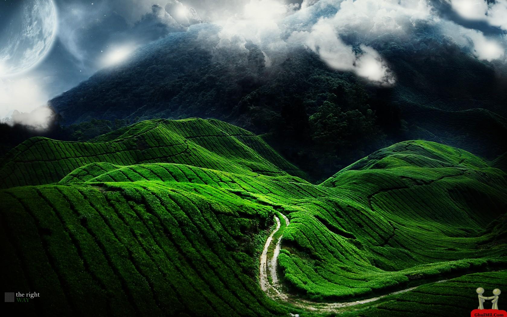 Track On Green Mountain HD Wallpaper E Entertainment 1680x1050