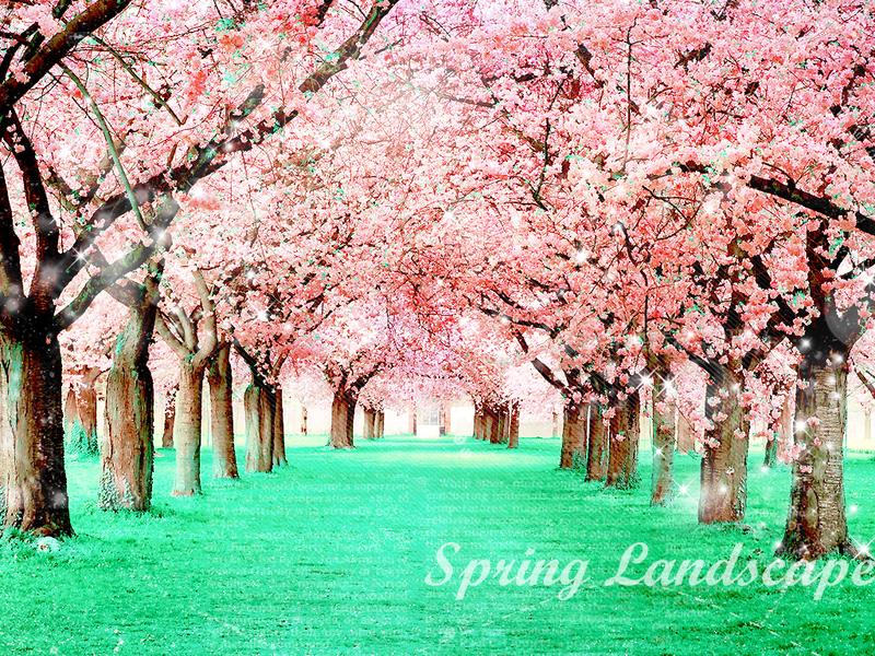 Spring Wallpaper Tumblr Spring Wallpap 800x600