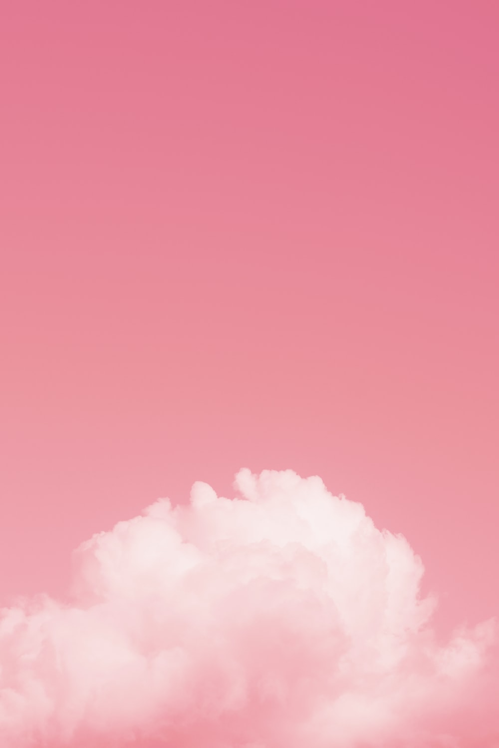 Pink Wallpapers HD Download [500 HQ] Unsplash