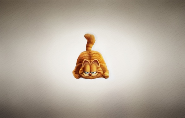 Wallpaper garfield garfield cat red plump sly face light 596x380