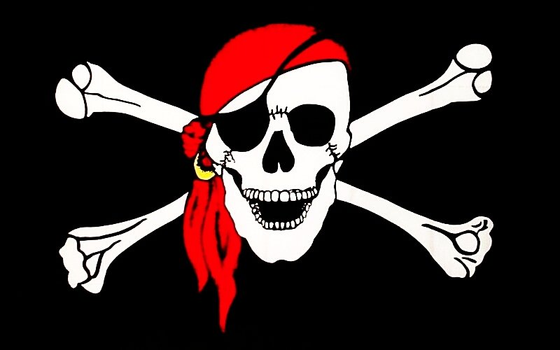 Proud Pirate Jolly Roger 800x500