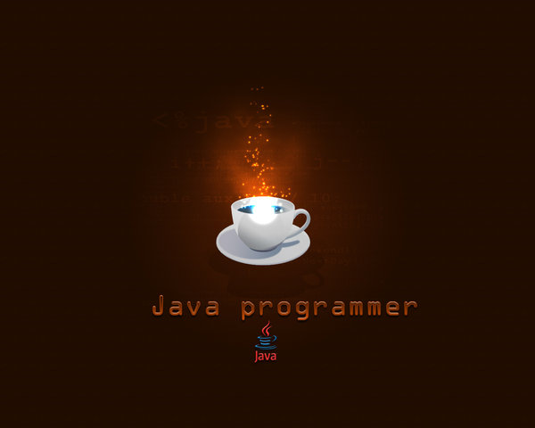 Java Programmer Wallpaper by Gr4Dm4n 600x480