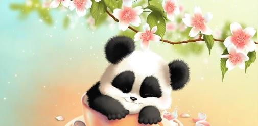 Cute anime panda wallpaper wallpapersafari for Fond ecran tablette android gratuit