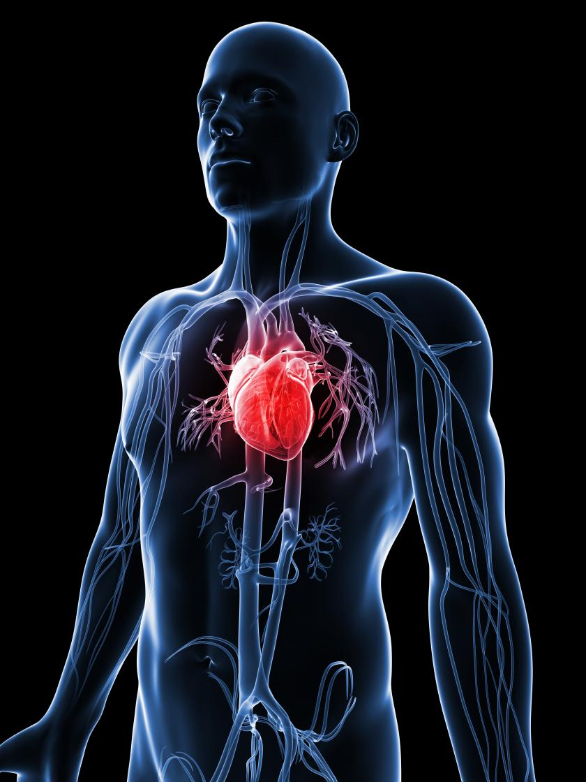 FDA Approves Stem Cell Treatment For Heart Disease Mayo Clinic To 840x1120