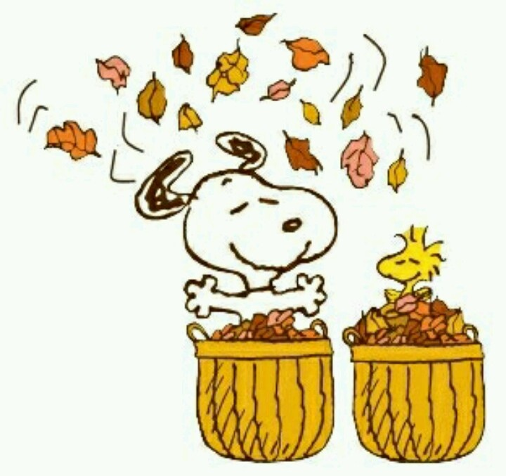 Snoopy Snoopy Fall Thanksgiving Pinterest 720x677