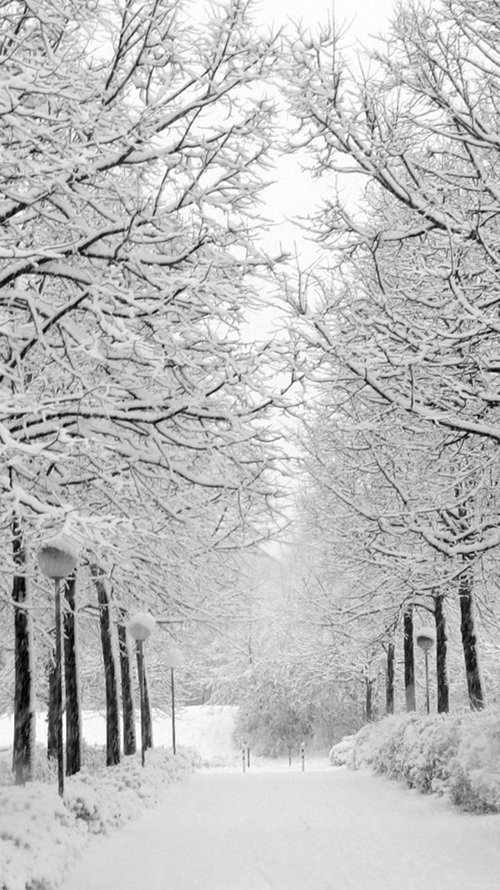 Winter wallpaper tumblr iphone
