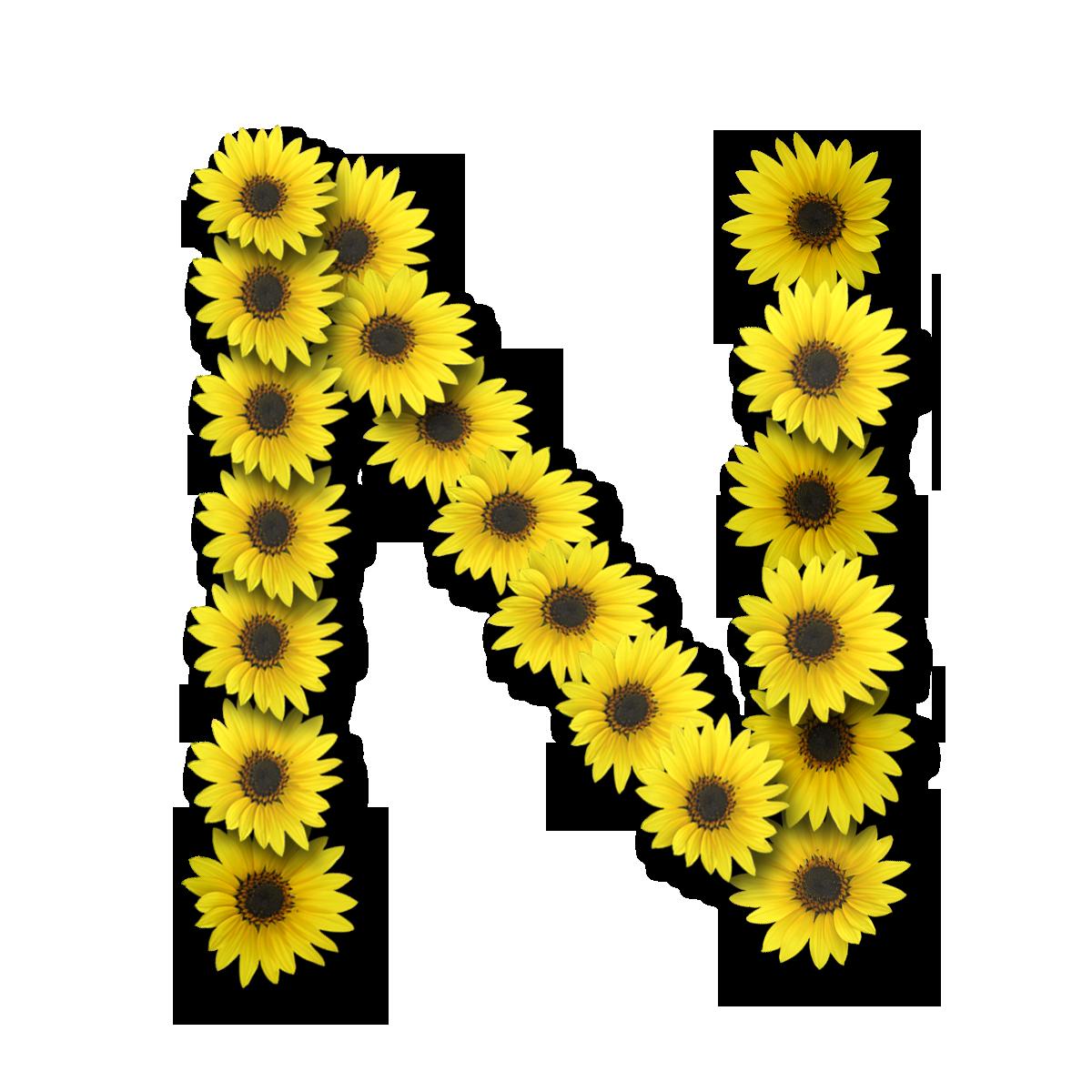 Letters N Wallpaper | PicsWallpaper.com