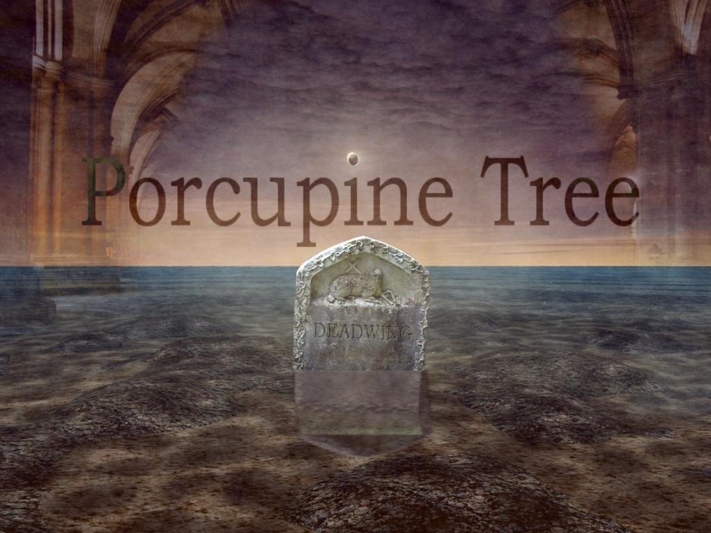 porcupine tree wallpaper wallpapersafari. Black Bedroom Furniture Sets. Home Design Ideas