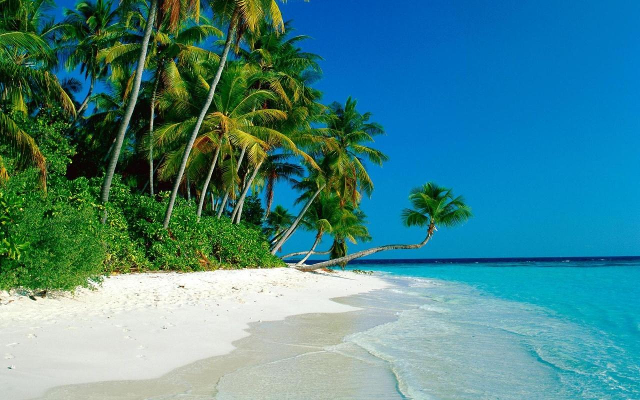 Island Beach HD Wallpaper Background Images 1280x800