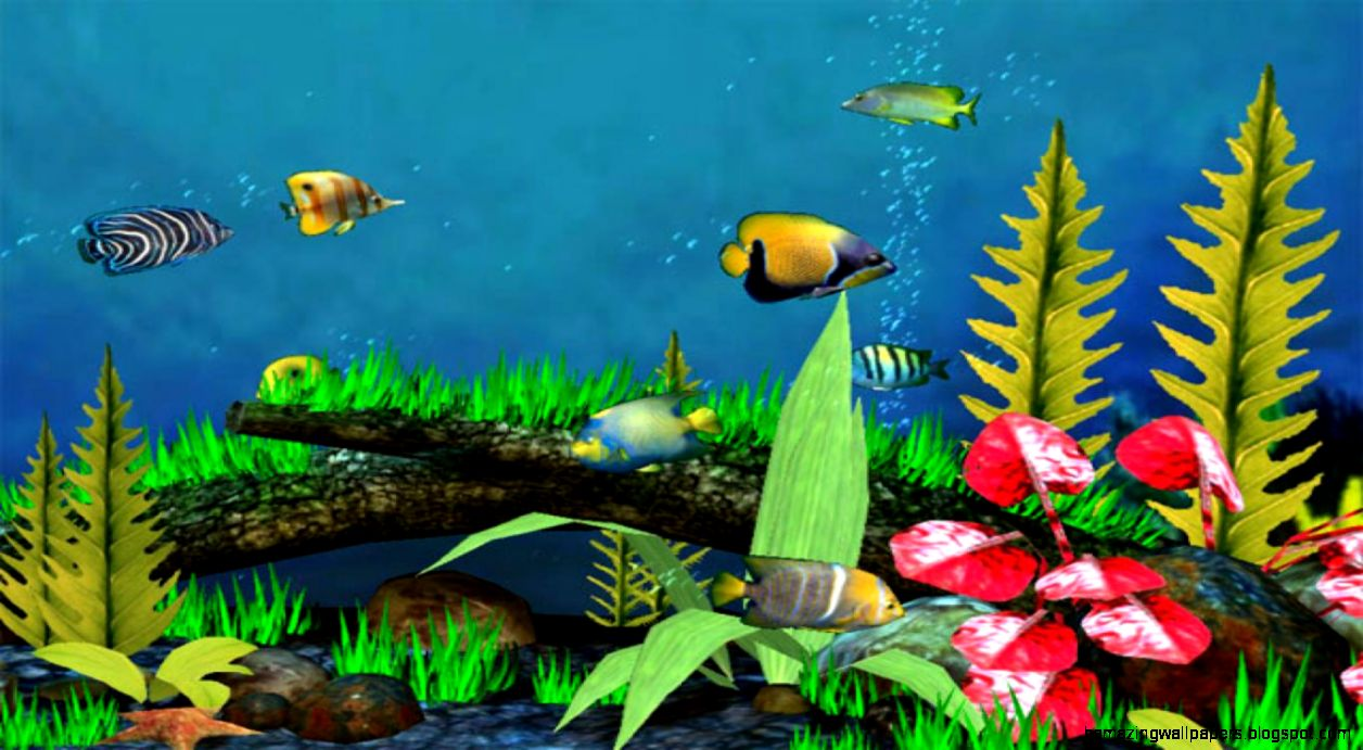 Free Download 3d Fish Wallpaper Desktop Amazing Wallpapers