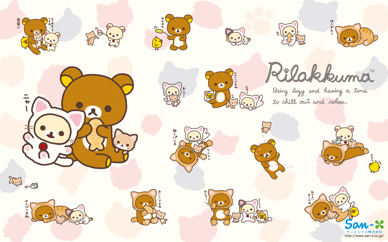 Wallpaper iphone san x - And Friends Rilakkuma Cat Series Wallpaper 800x600 1024x768