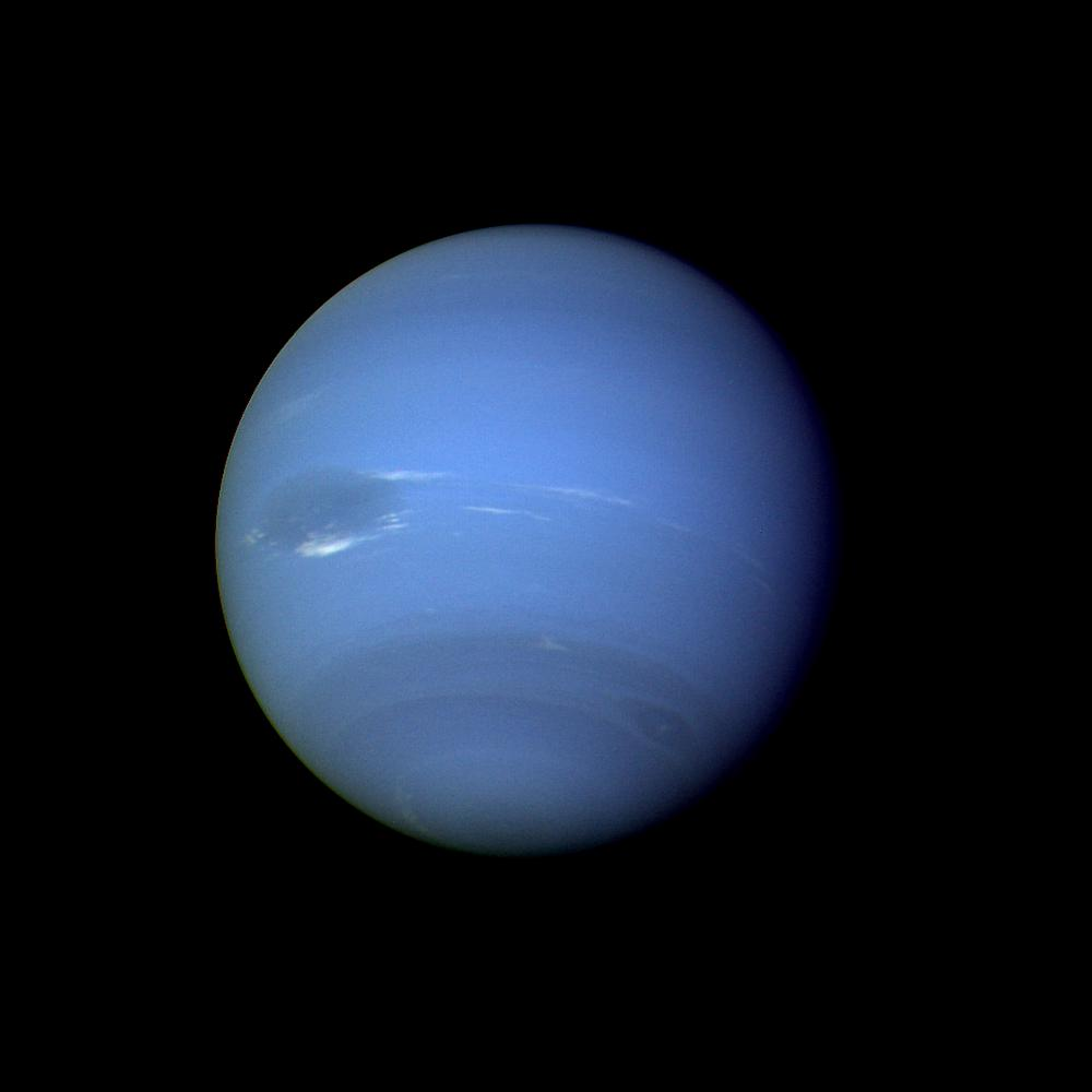 Neptune by NASA via wikipedia Why Evolution Is True 1000x1000