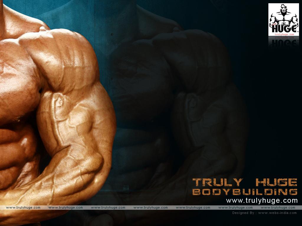Fitness Bodybuilding 1024x768