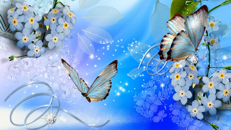 blue butterflies Blue Butterflies Blue Flowers Wallpaper 800x450