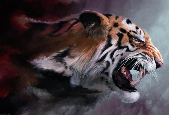 cat big cat tiger fangs maw art paint desktop wallpaper 3D 590x400