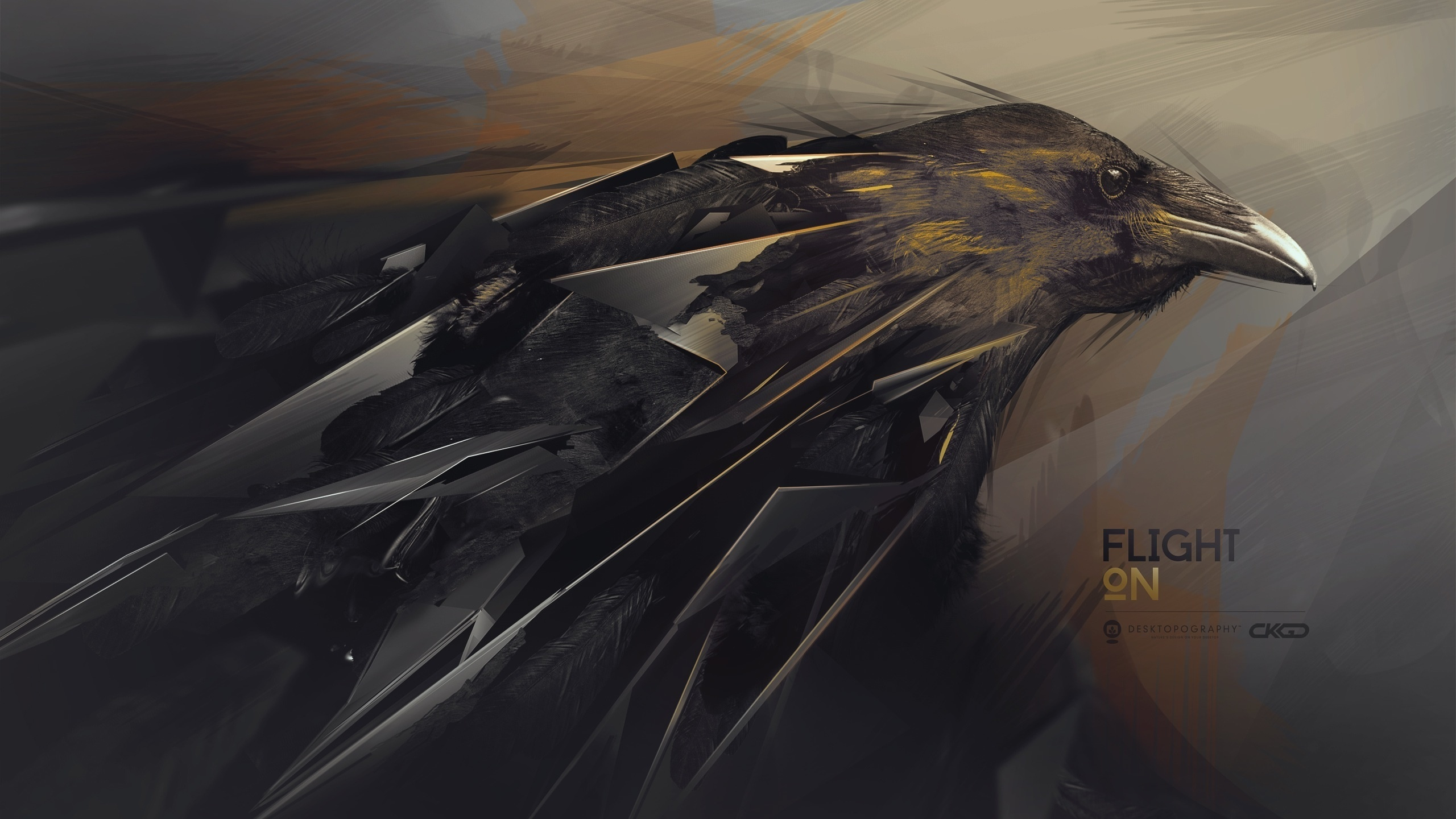 Abstraction hq wallpaper raven wallpaper 2560x1440 2560x1440