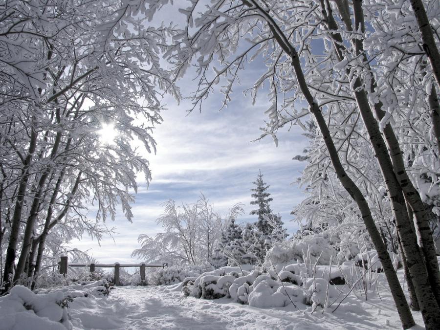 Beautiful snowy scene wallpapers wallpapersafari for Foto per desktop inverno