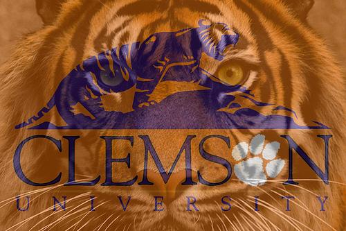 clemson wallpaper wallpaper tigers clemson 500x333