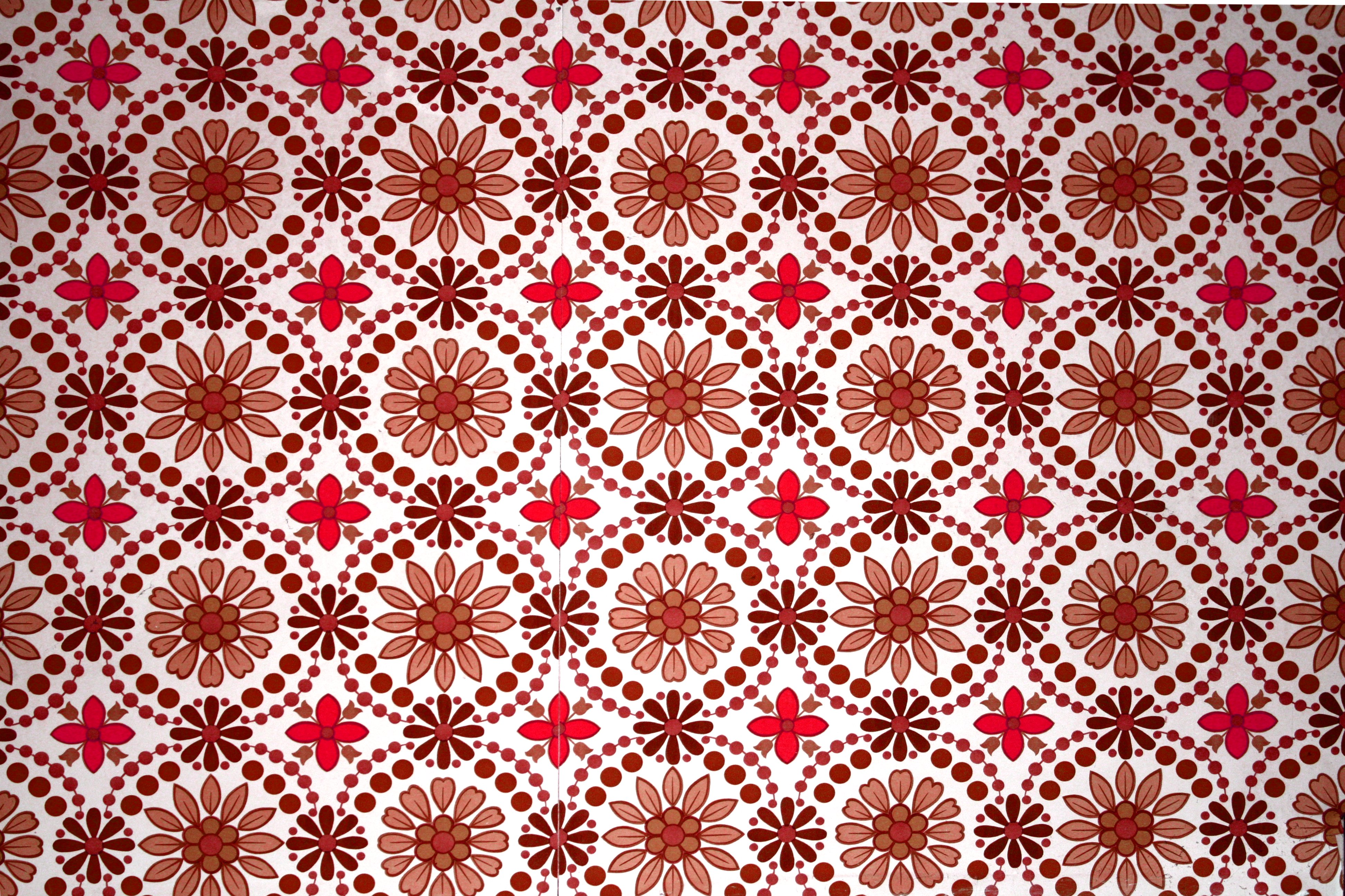 Brown and Red Flower Wallpaper Texture Picture Photograph 3888x2592