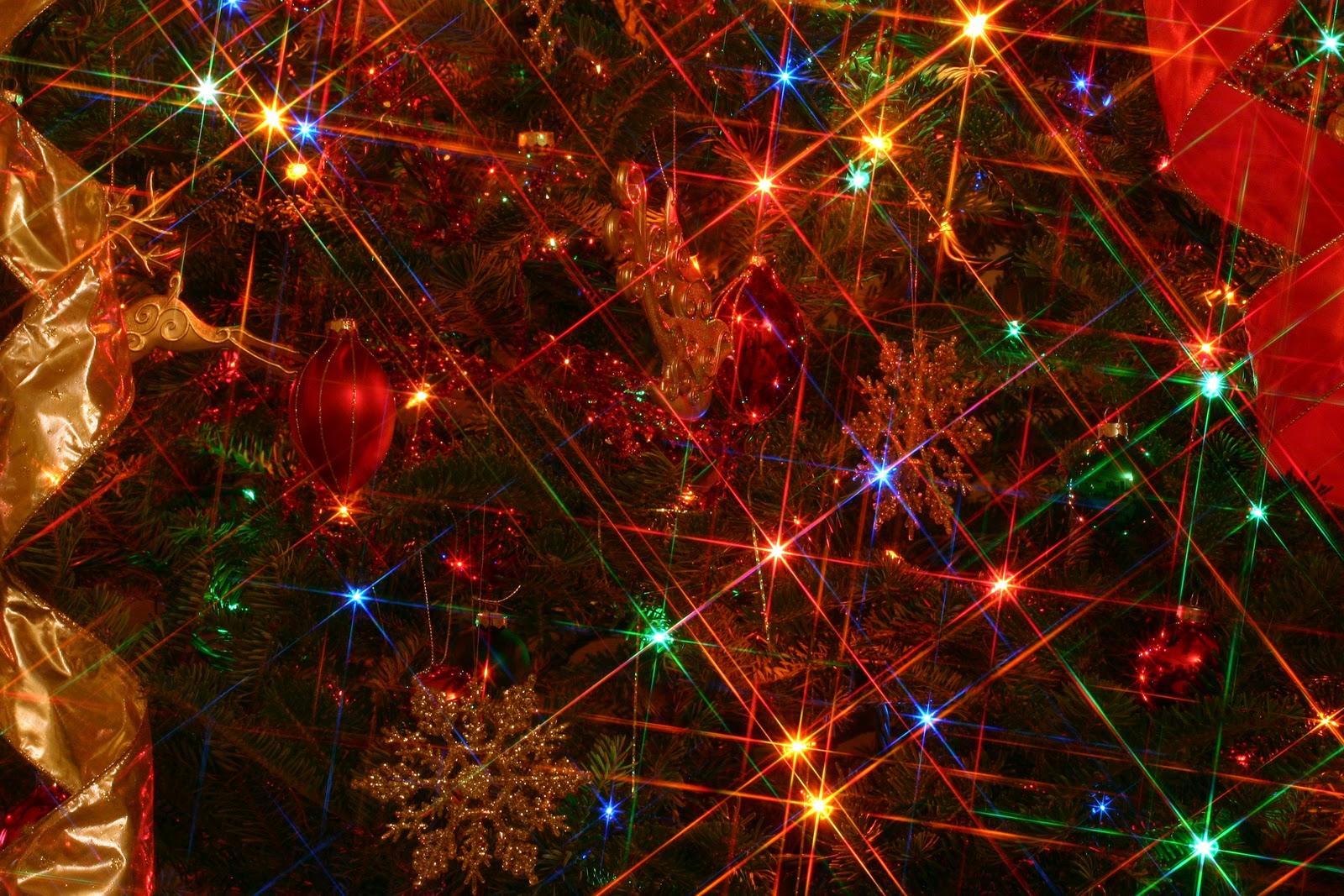 73 Christmas Lights Background On Wallpapersafari