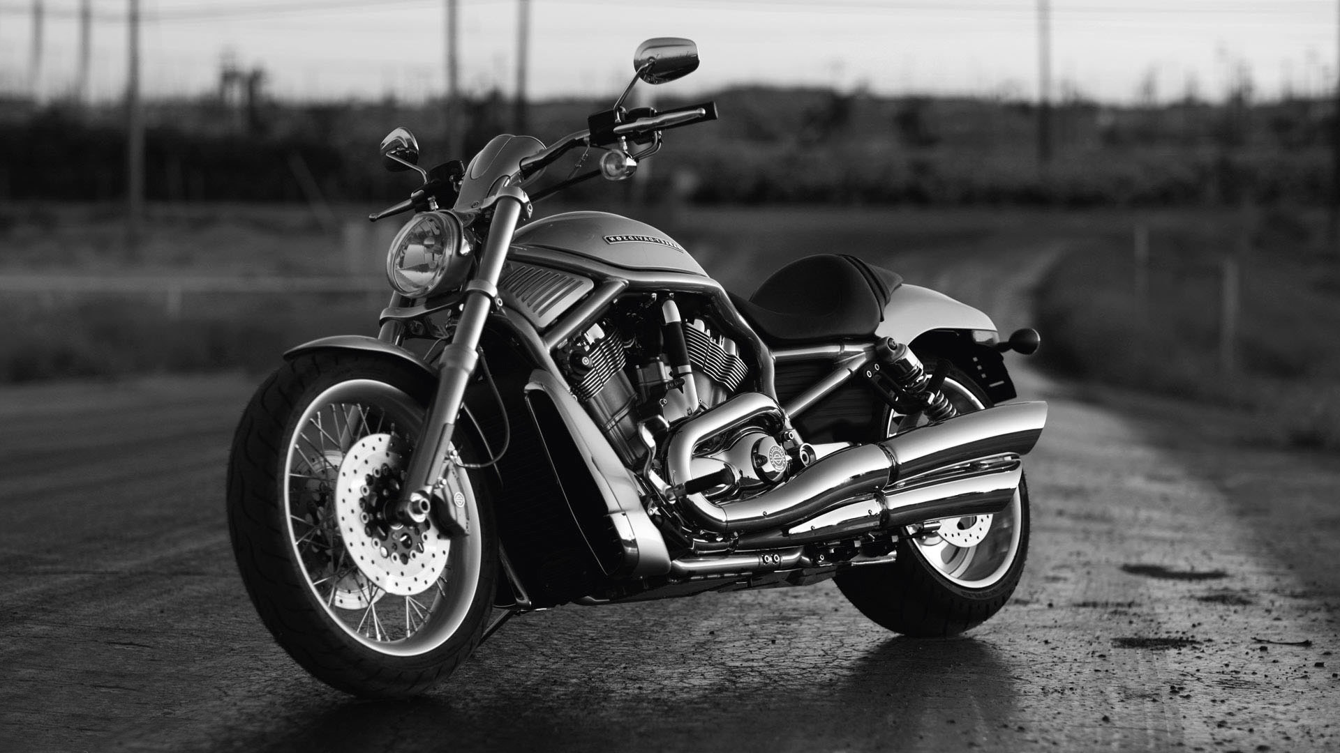 73 Harley Davidson Wallpaper Widescreen On Wallpapersafari