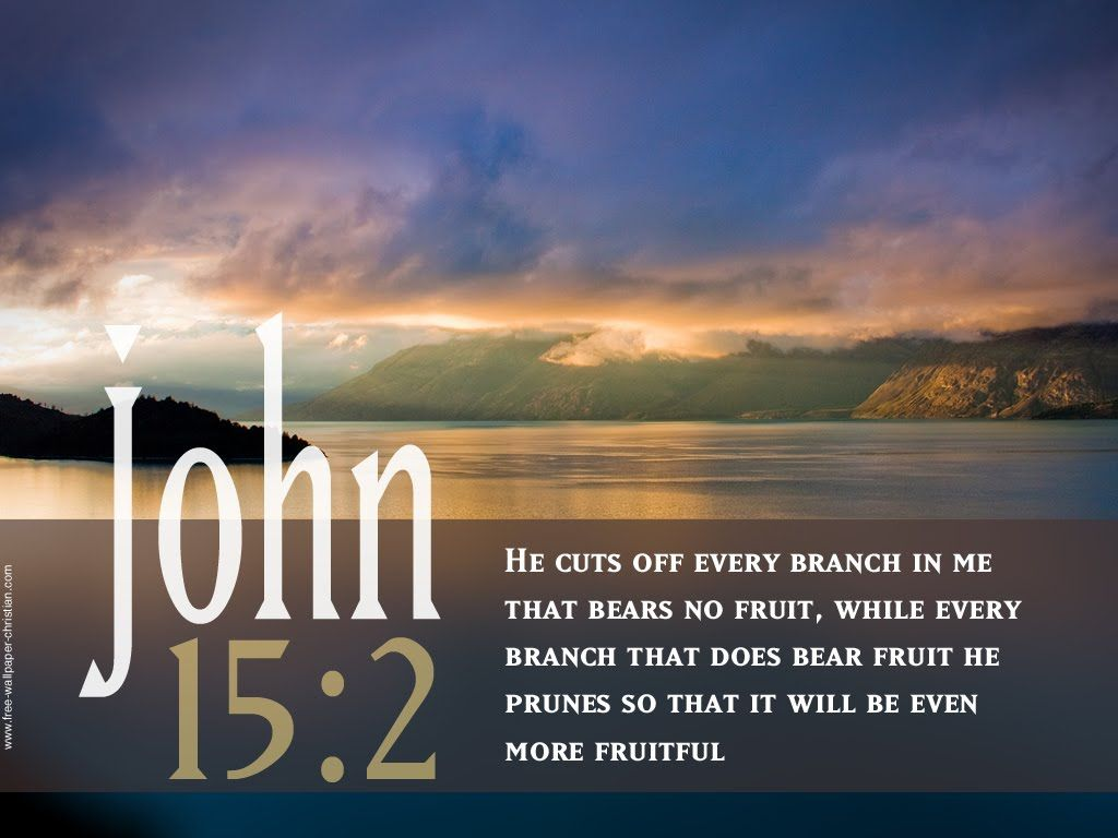 Pin on Bible verses with picture 1024x768