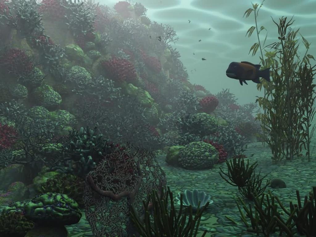 3D Underwater Wallpaper Cool Pictures 1024x768