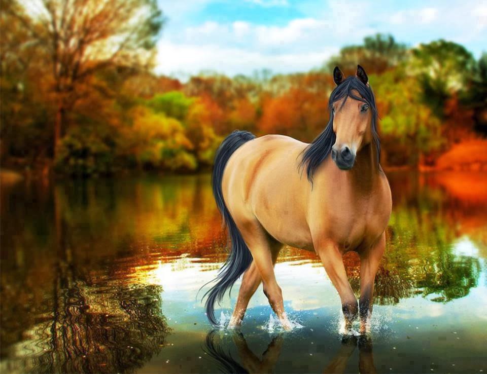 75 Free Horse Backgrounds On Wallpapersafari