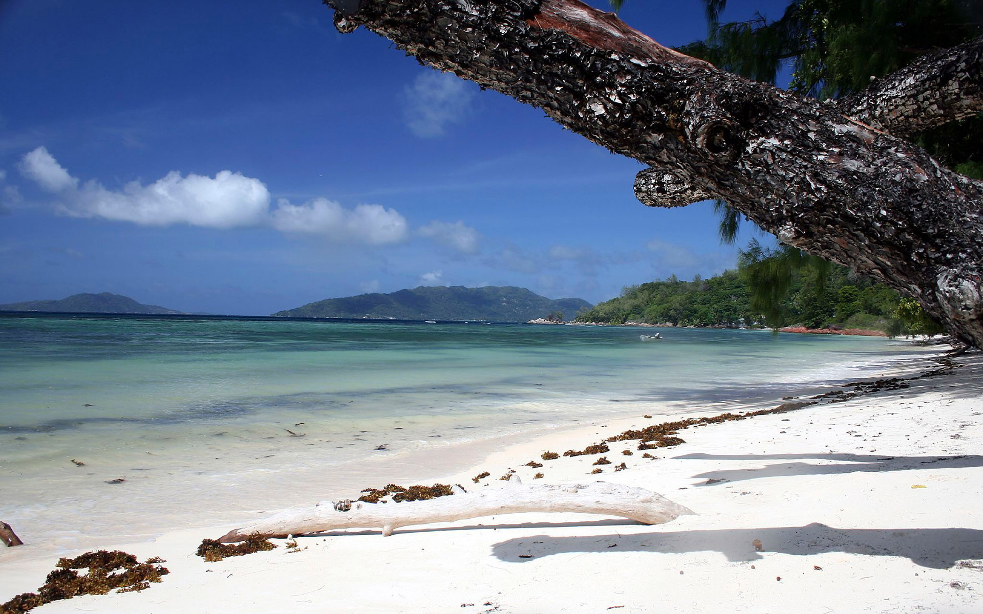 Best Beaches HD Wallpaper 1920 X 1200 21 1920x1200