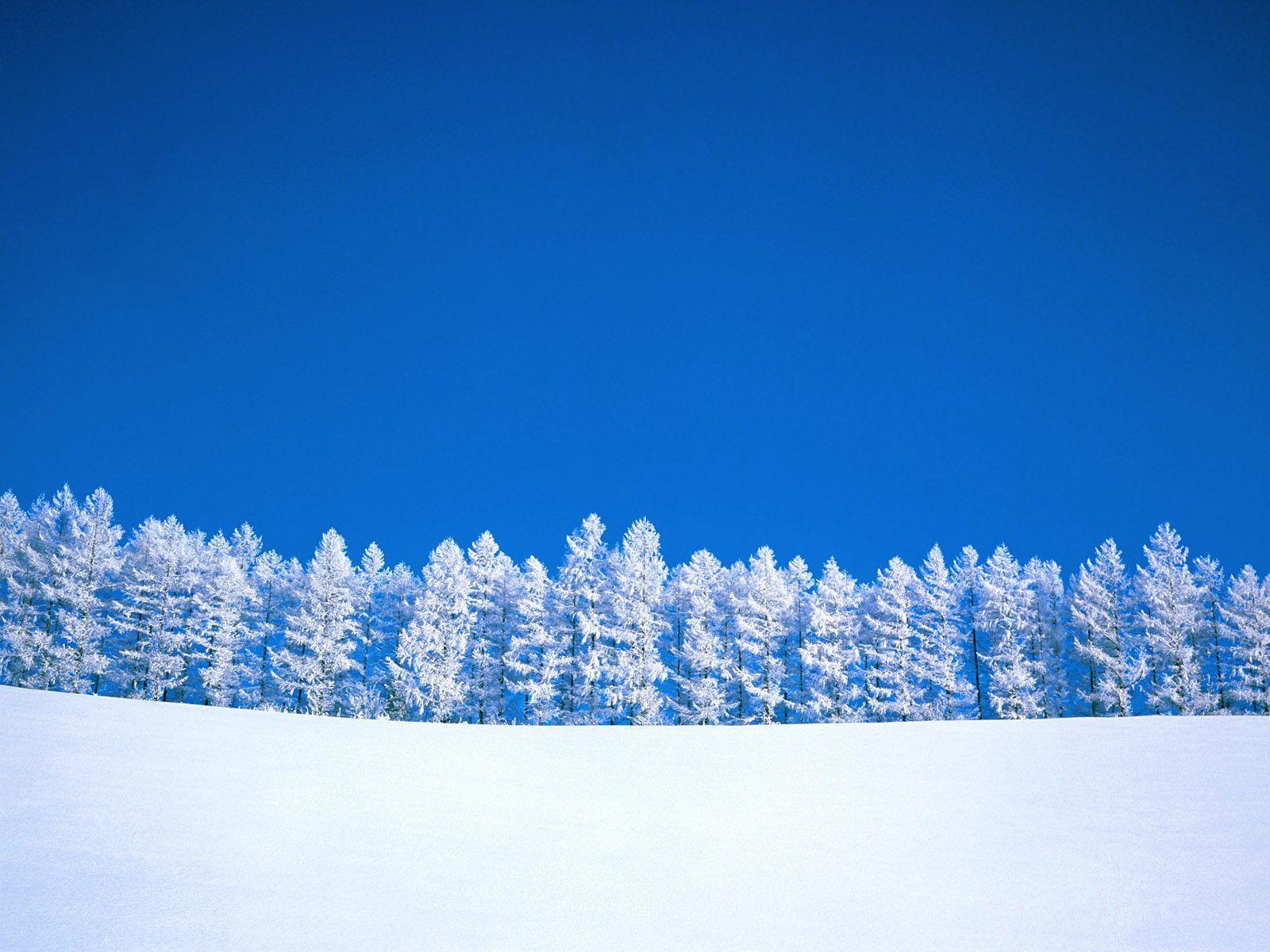 Winter Powderblue Wallpaper hd downloads Iphone Ipad 1600x1200