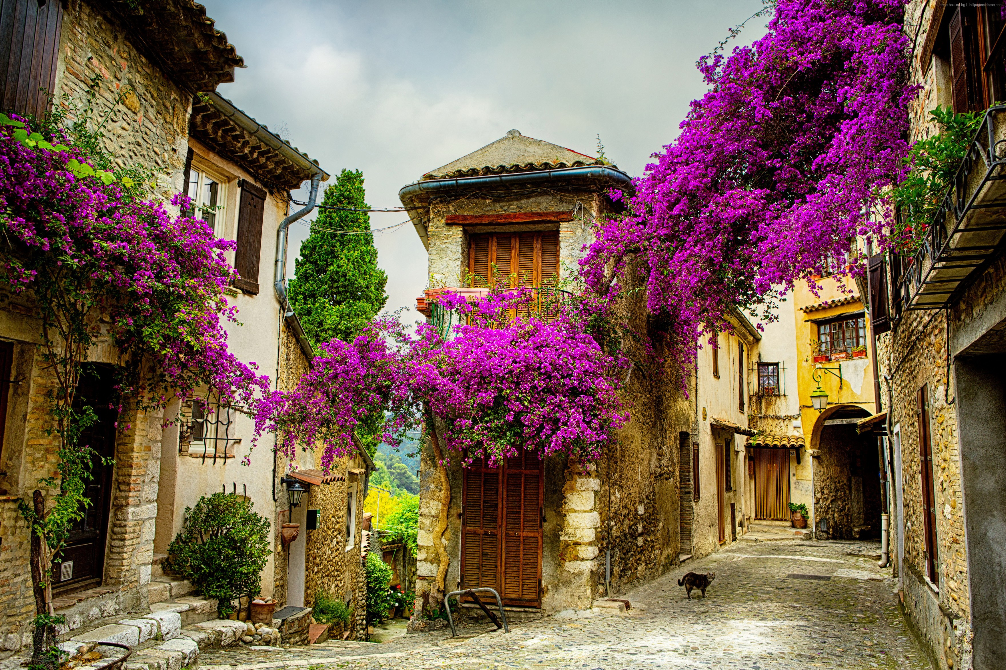 Street in Provence France HD Wallpaper Background Image 3520x2345