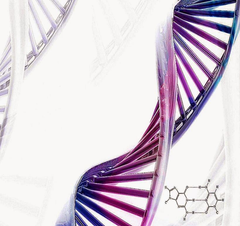 3D Image DNA HD Wallpaper Download 819x769