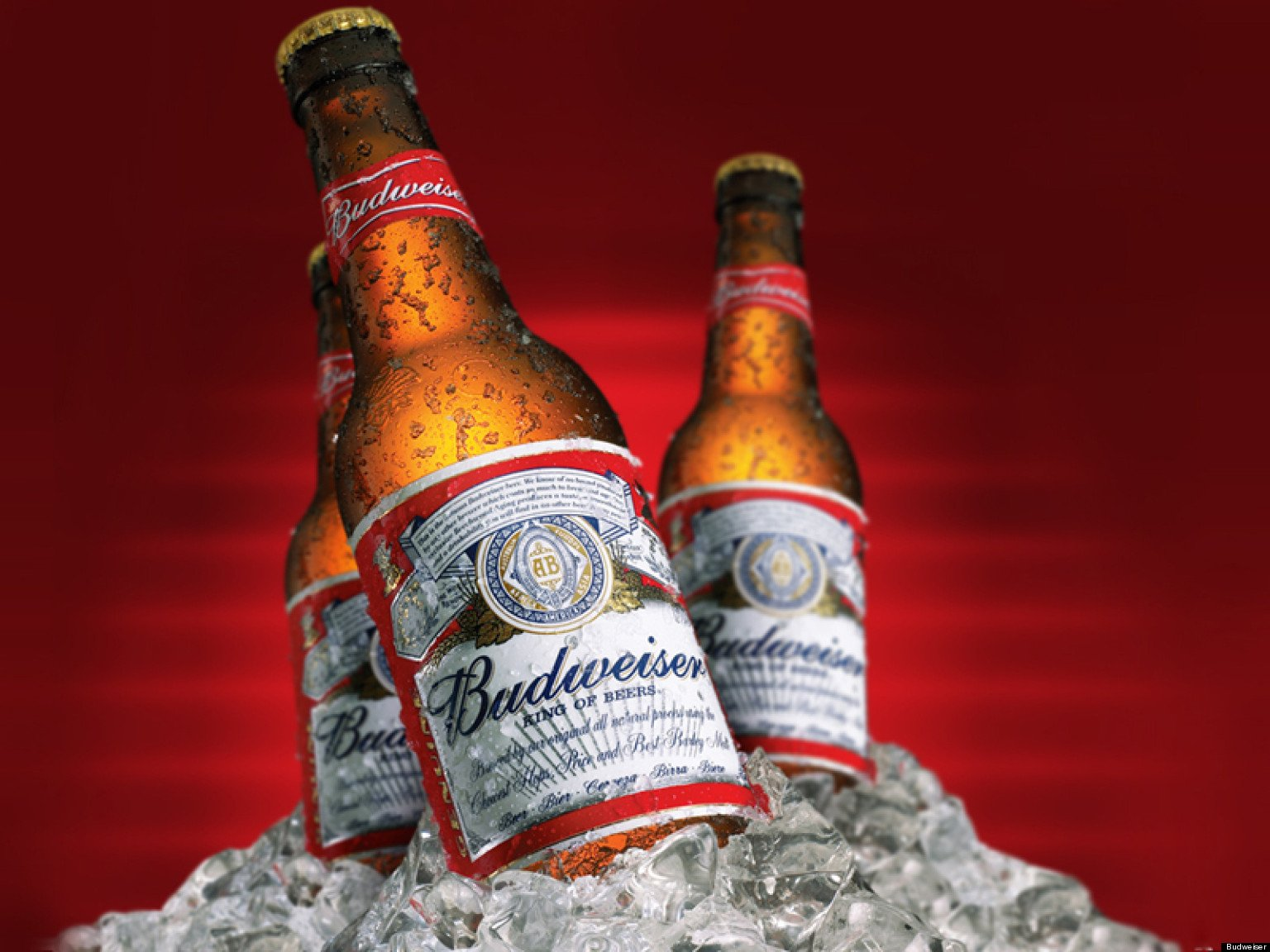 Budweiser Wallpapers - WallpaperSafari