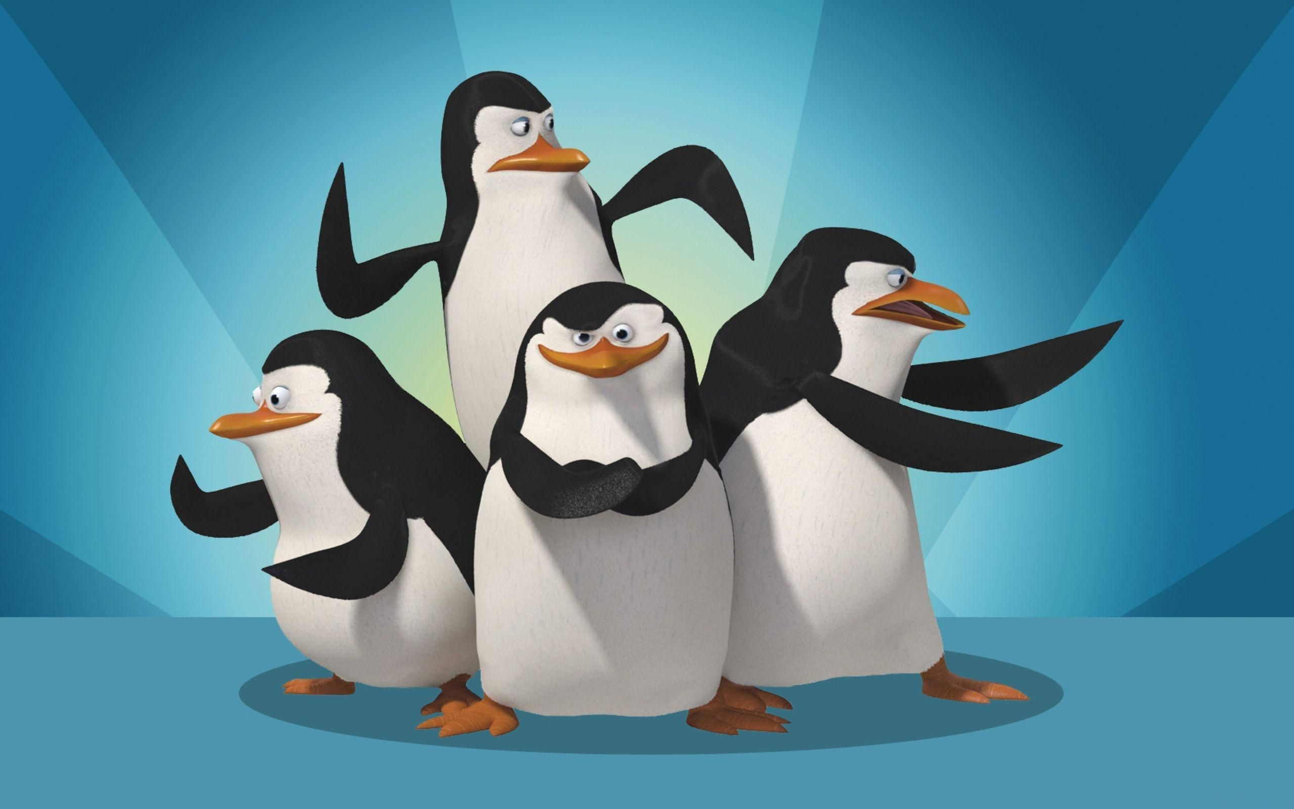 Penguins of madagascar wallpaper 3 Madagascar movie Penguins 2560x1600