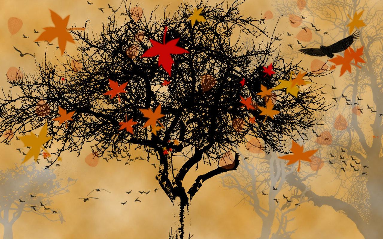 free fall screensavers and wallpaper wallpapersafari