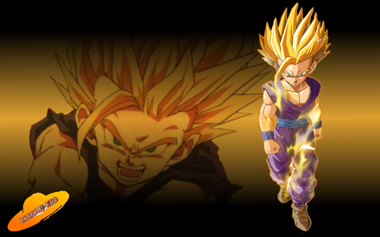 Gohan e Goku Wallpapers  Guild 1280x800